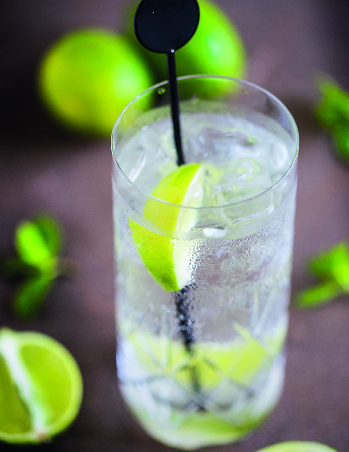 Arden House Hotel Photo Gallery gin and tonic